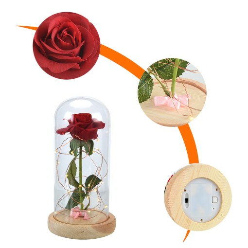 Beauty-and-the-Beast-Red-Rose-in-a-Glass-Dome-on-a-Wooden-Base-for-Valentine-8.jpg