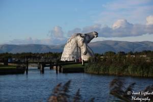Kelpies Schotland