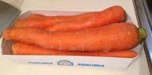 Sorbetto-carote-mandorle