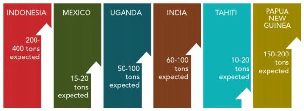 Vaniglia-mercato-mondiale