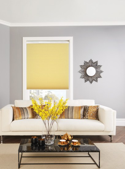 Pleated blinds 12