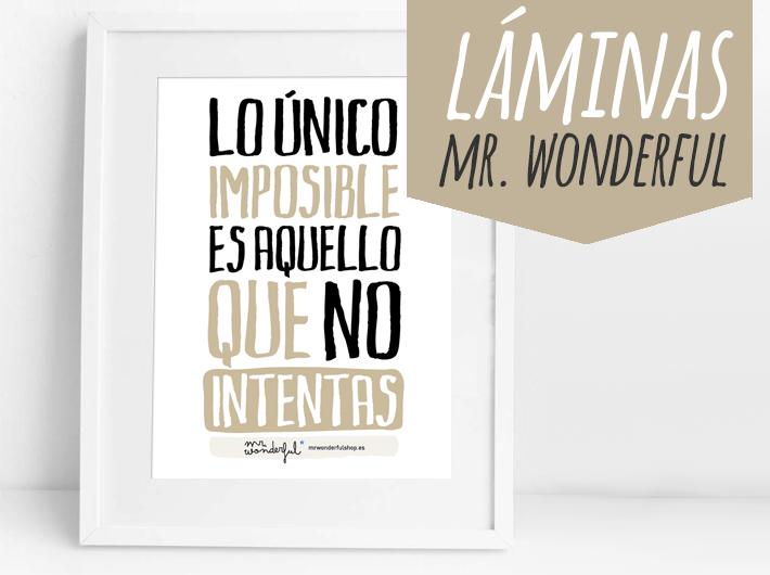 laminas mr wonderful