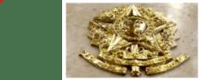 Presidente do STF decreta luto oficial por 100 mil mortes pela Covid-19