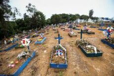 Genocídio - Assumiram o risco e mataram
