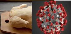China identifica coronavírus em asa de frango brasileiro