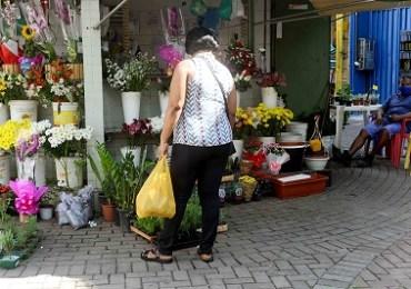 Salvador - Orquídeas e rosas são as mais procuradas no Mercado da primavera