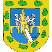 Nuevo escudo