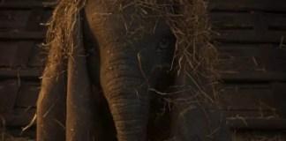 Imagem do filme Dumbo