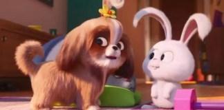 Daisy em Pets 2