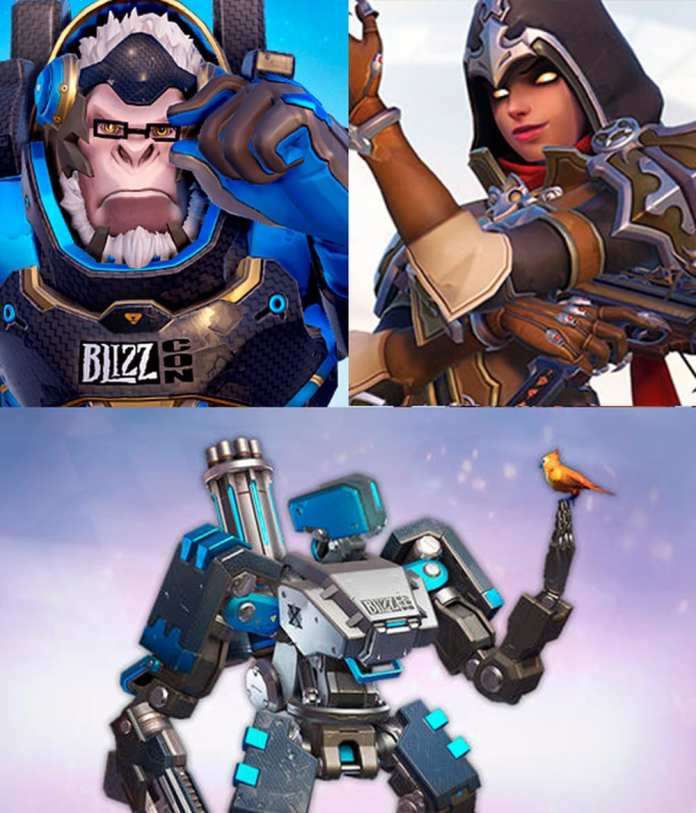 Skins blizzcons