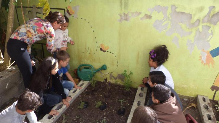 antonio paschoal - horta 4