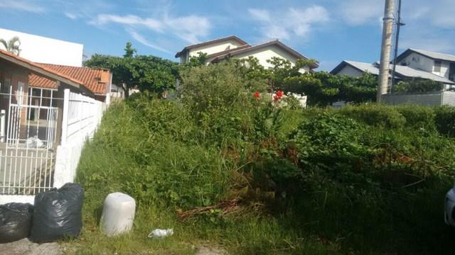 Vazamento de esgoto na Cachoeira do Bom Jesus causa transtorno para moradores