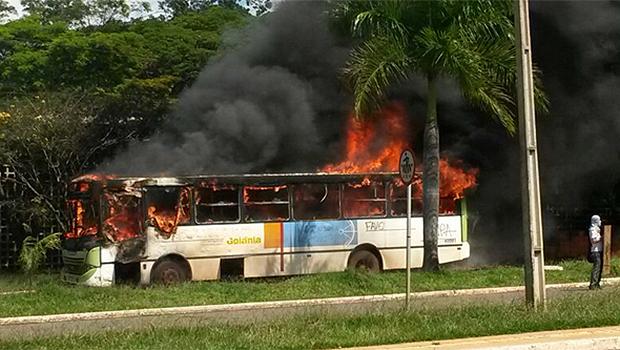 Deputado goiano quer tornar crime imprescritível e inafiançável queimar ônibus