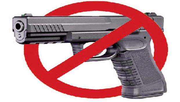 Estado em que o cidadão está mais armado é o menos violento do país