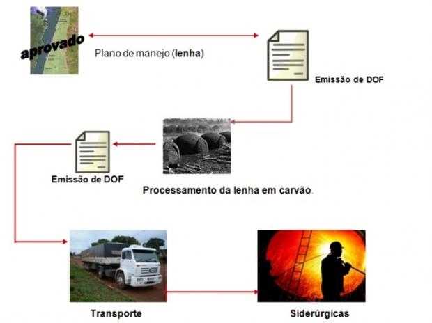 Fluxograma sobre falsificação do DOF   Reprodução PF