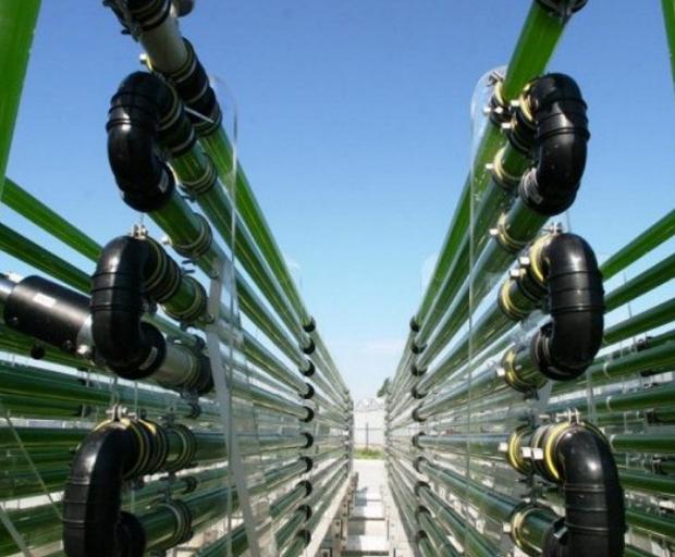 Usina de biocombustível, se concretizada, deverá gerar 5 mil empregos | Foto: Divulgação