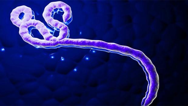 Caso de ebola só será descartado após segundo exame