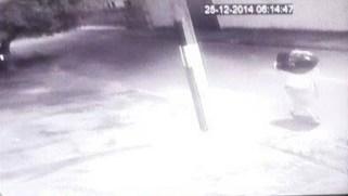 Câmeras de segurança registraram o momento em que Fábio deixou a sacola embaixo de uma árvore, onde já havia outros sacos de lixo Foto: Reprodução