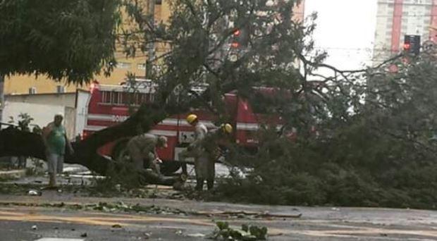 Chuva forte causa estragos na capital
