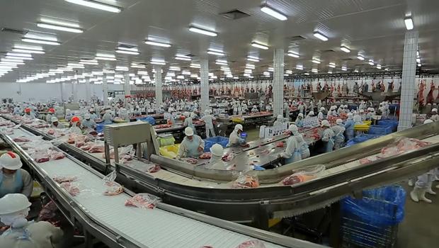 Investimento para abertura da primeira fábrica do Tocantins da marca JBS chega a R$ 20 mi | Foto: reprodução / vídeo / divulgação