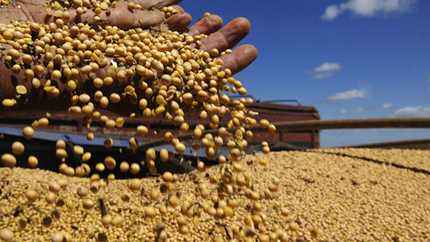 Safra de soja e milho de Goiás ganha primeira página do Valor Econômico