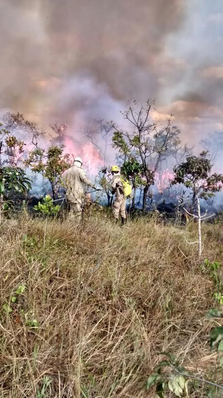 Resultado de imagem para fogo na serra dos pireneus