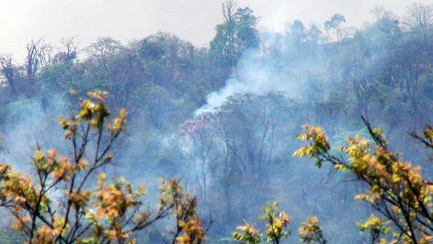 Focos de incêndio insistem no Parque Altamiro de Moura Pacheco