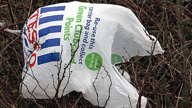 Uma simples sacola plástica, tão do gosto dos consumidores brasileiros, pode se tornar foco para o Aedes aegypti   Foto: Divulgação