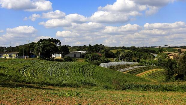 Jovem de 23 anos morre no interior de Goiás após cair em máquina agrícola
