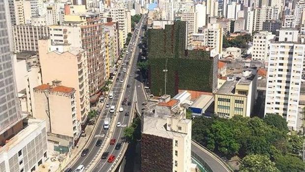 Projeto incentiva implantação de jardins verticais em Goiânia