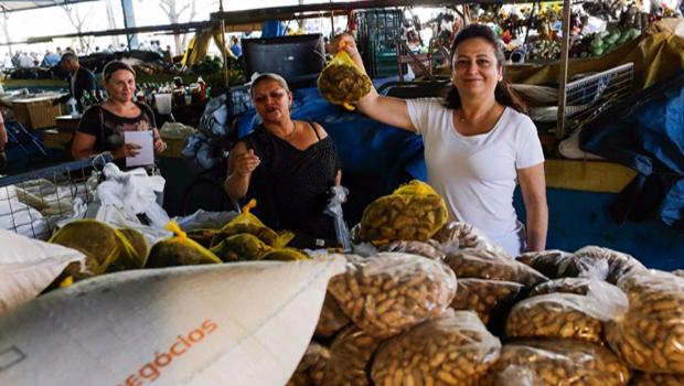 Kátia Abreu e sua colheita de tempestades