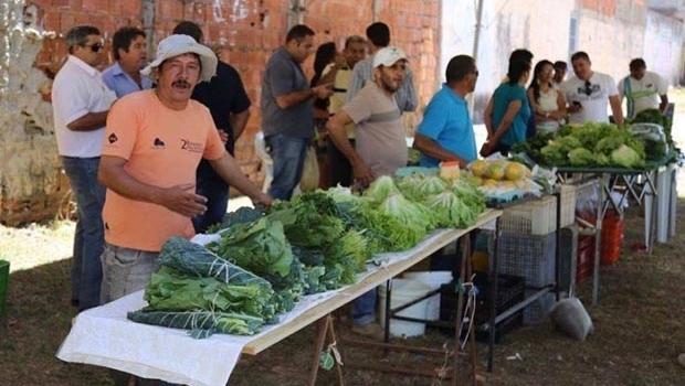 Feira do Produtor de Valparaíso de Goiás incentiva pequenos agricultores
