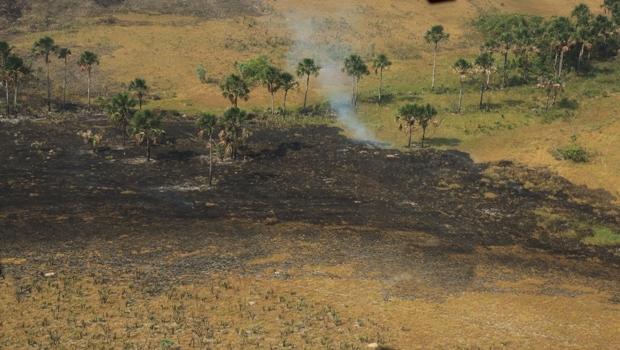 Polícia reforça tese de incêndio criminoso na Chapada dos Veadeiros