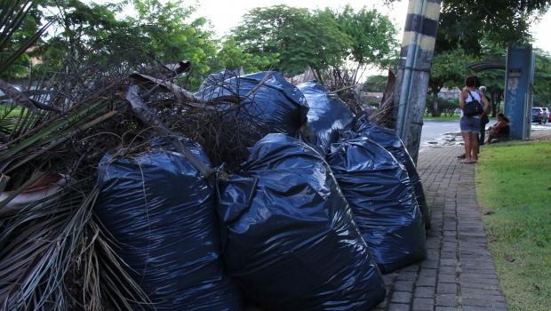 Lixo volta a acumular