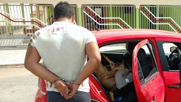 Homem bêbado é preso carregando porco em cadeirinha de bebê