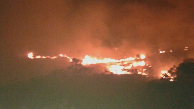 Goiás já registra mais de 800 incêndios florestais em 2018