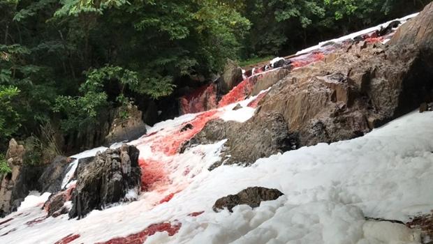 Acidente muda coloração do Rio Vermelho e assusta moradores da Cidade de Goiás