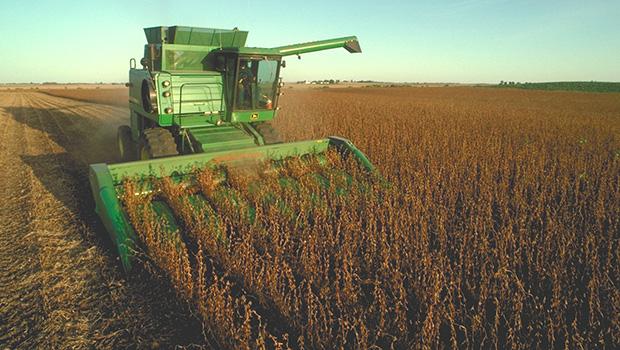 Produção de soja deve atingir patamar recorde