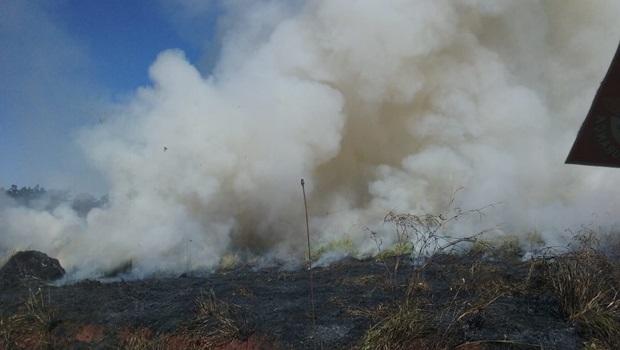 Corpo de Bombeiros combate incêndio às margens da GO 070 em Inhumas