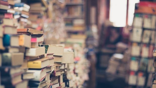 A Literatura e a contação de histórias: a arte de ser professor