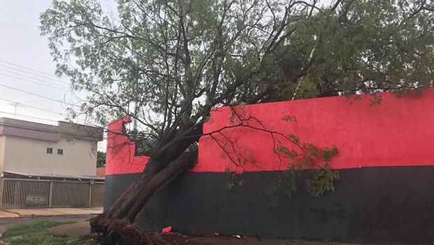 Chuva na tarde desta sexta-feira causa estragos em Goiânia