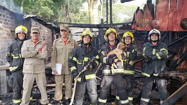 Bombeiros combatem incêndio em carreta e salvam cachorro das chamas