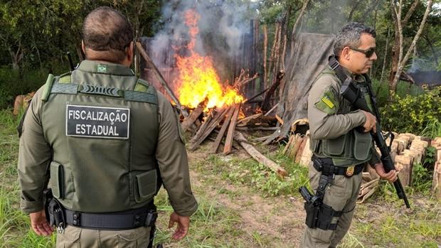 Secima flagra ações clandestinas no Parque Estadual de Terra Ronca