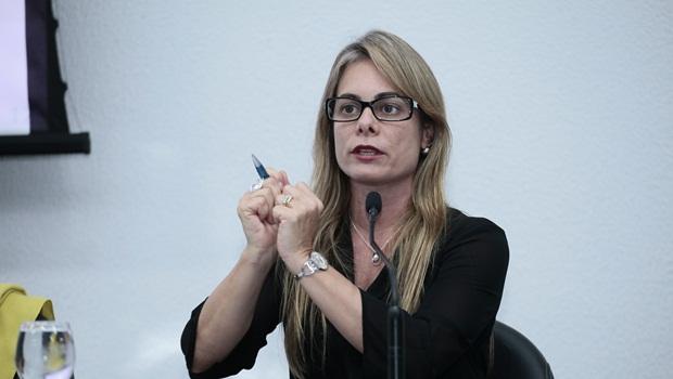 """""""FCO será usado em infraestrutura"""", sinaliza Schmidt ao setor privado"""