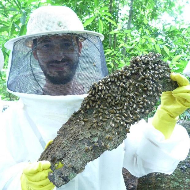 Criador de abelhas agrotóxicos