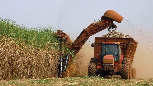 Produção de açúcar no Centro-Sul será menor do que previsto pela Conab