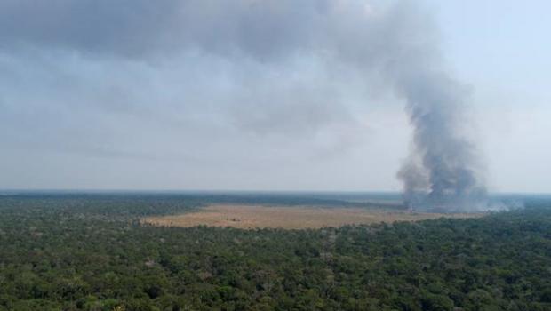 Governo proíbe queimadas no Brasil por 120 dias