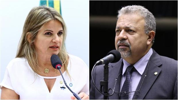 Flávia Morais Elias Vaz - Fotos Vinicius Loures e Cleia Viana Câmara dos Deputados