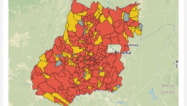 Goiás tem 12.836 casos confirmados e 262 mortes por Covid-19