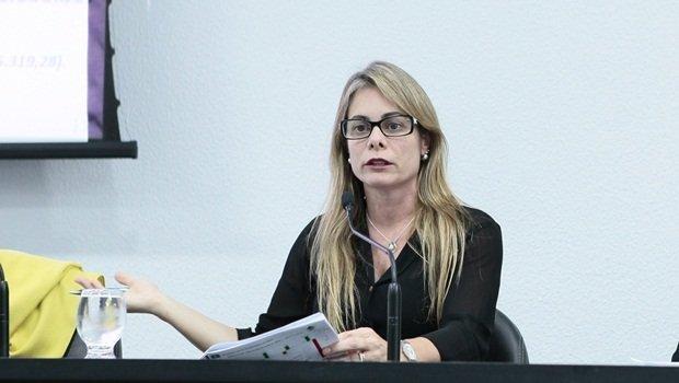 Cristiane Schmidt apresenta proposta orçamentária para 2021 aos deputados